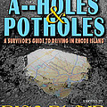 A--holes And Potholes Book Cover by Mike Nellums