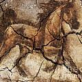 A Horse - Cave Art by Dragica  Micki Fortuna