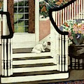 A House And Garden Cover Of A Cat On A Staircase by Ethel Franklin Betts Baines