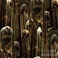 A Jungle Of Ferns by Four Hands Art