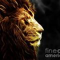 A King's Look 2 by Ben Yassa