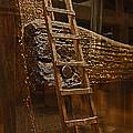 A Ladder's Rung by David Kehrli