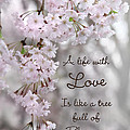 A Life With Love by Lori Deiter