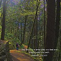 A Light Unto My Path by Charles Robinson