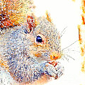 A Little Bit Squirrely by Kerri Farley