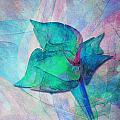 A Little Flower by Klara Acel