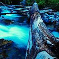 A Log Over Rapids by Jeff Swan