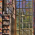 A Look From The Library by Susan Candelario