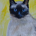 A Loving Siamese by Leslie Allen