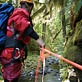 A Man Lowers A Rope For Canyoning by Frank Huster