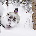 A Man Skiing Powder In The Trees by Mike Schirf
