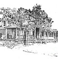 A Martha's Vineyard Cottage by P Anthony Visco