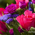 A Mixed Bouquet by Anne Gilbert
