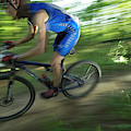 A Mountain Biker Races On A Trail by Andrew Kornylak