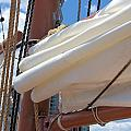 A Nice Pile Of Sail by Valerie Kirkwood