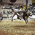 A Night At The Rodeo V36 by Douglas Barnard
