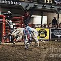 A Night At The Rodeo V39 by Douglas Barnard