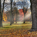 A November Morning Square by Bill Wakeley