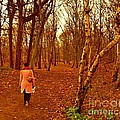 A November Stroll Through Formby Woods by Joan-Violet Stretch