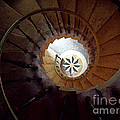 A Painting Villa Vizcaya Spiral Staircase by Mike Nellums