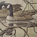 A Pair Of Ducks by Wanda Dansereau
