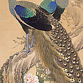 A Pair Of Peacocks In Spring by Imao Keinen