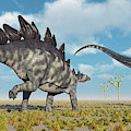 A Pair Of Stegosaurus Dinosaurs by Mark Stevenson