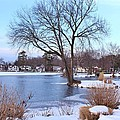 A Peaceful Winter Day by Karen Silvestri