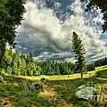 A Peacful Yosemite Day by Blake Richards
