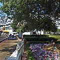 A Perfect Day On The Boardwalk Walt Disney World by Thomas Woolworth