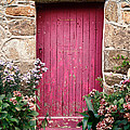 A Pink Door by Olivier Le Queinec