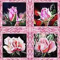 A Pink Quartet Of Single Roses by Irina Sztukowski