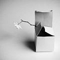 A Present by Kristina Oveckova