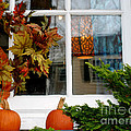 A Pretty Autumn Window by Living Color Photography Lorraine Lynch