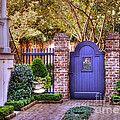 A Private Garden In Charleston by Kathy Baccari