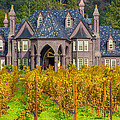 The Ledson Castle - Kenwood, California by Tirza Roring