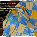 A Quilt With Daisies And Quote by Barbara Griffin