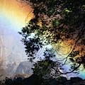 A Rainbow Below Yosemite Falls by Marc Moritsch