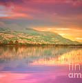 A Rainbow Morning by Tara Turner