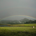 A Rainbow Over A Valley With A Small by Marcos Ferro