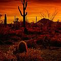 A Red Desert  by Saija  Lehtonen