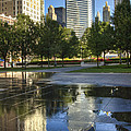 A Reflection Of Chicago by Lindley Johnson