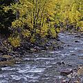 A River Runs Through It by David Kehrli