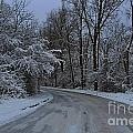 A Road In Winter. by Dipali S