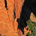 A Rock Climber In A Blue Shirt Climbing by Keith Ladzinski