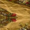A Rose Bud Stream by Ray Tapajna
