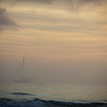 A Sailboat In The Morning Mist by Todd Korol