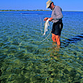 A Salt Water Fly Fisherman Catches by Stephen Gorman