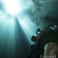 A Scuba Diver Surfacing And Looking by Michael Wood