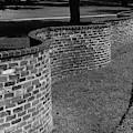 A Serpentine Brick Wall by William and Neill Dingledine